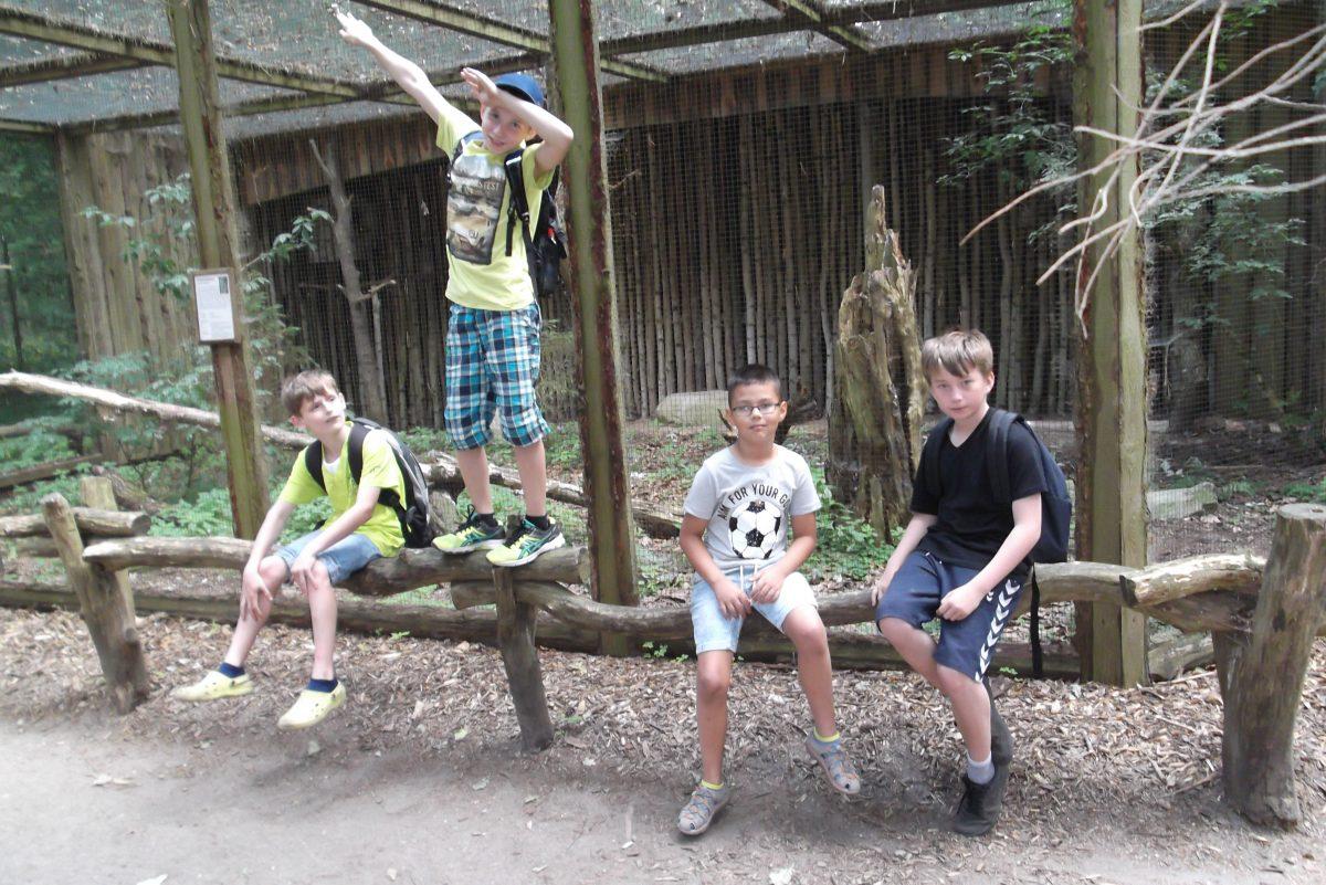Ausflug zum Wildpark Eekholt